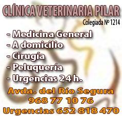 Clínica Veterinaria Pilar