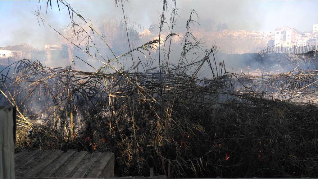 Incendio-en-el-Parque-Municipal-02
