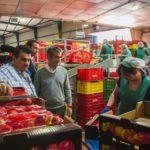Visita consejero de Agricultura Frutas Torero