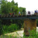 Puente Viejo (Abarán)